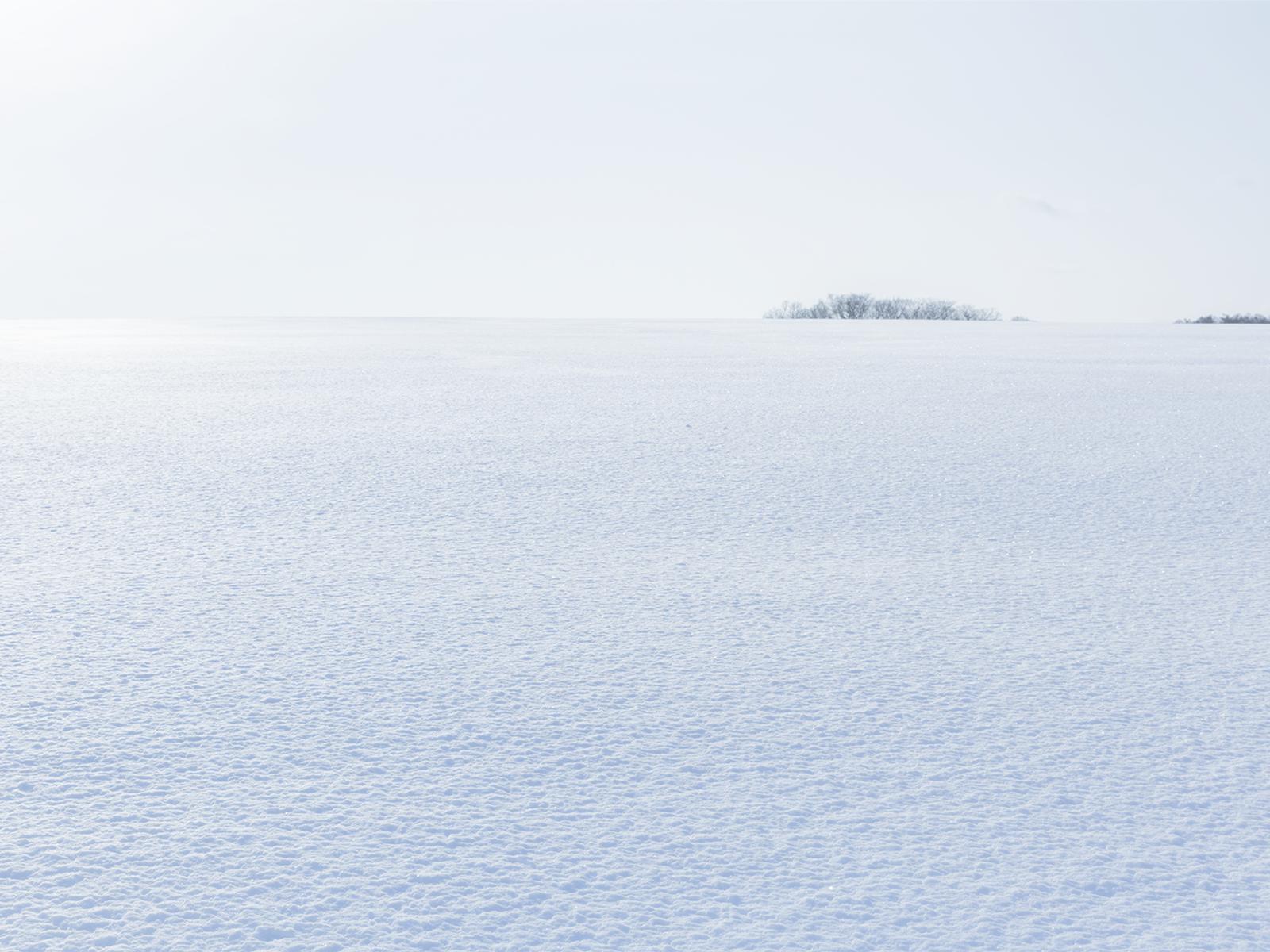 メインイメージ:雪原