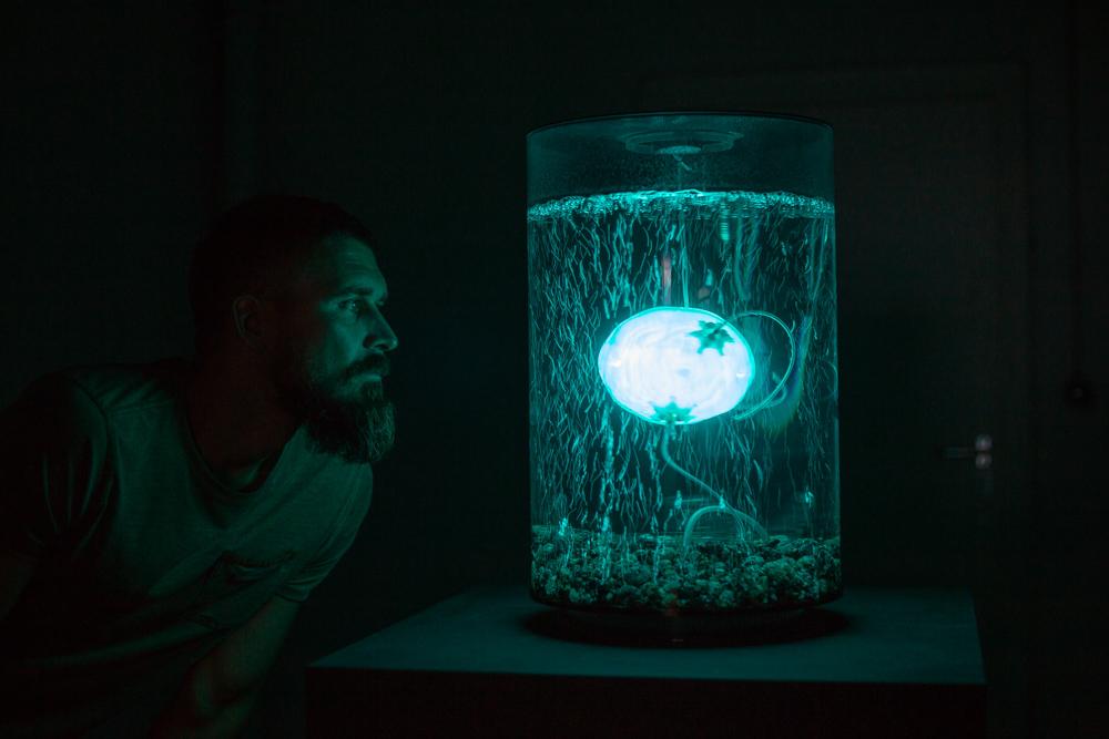 画像:<p>《ArchaeaBot》by Anna Dumitriu and Alex May in collaboration with scientist Amanda Wilson at Imperial College - Photo credit Vanessa Graf/ Ars Electronica 2018, Linz, Austria</p>